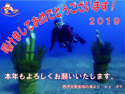 静岡県西伊豆町黄金崎公園ビーチの水中門松の画像です。ここはダイビングはもちろんシュノーケリングや体験ダイビングも楽しめる絶景ポイントです。