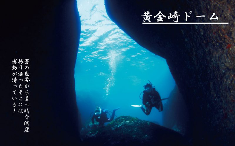 西伊豆黄金崎公園ドームはダイバーなら一度は訪れたい。強大な空間です。