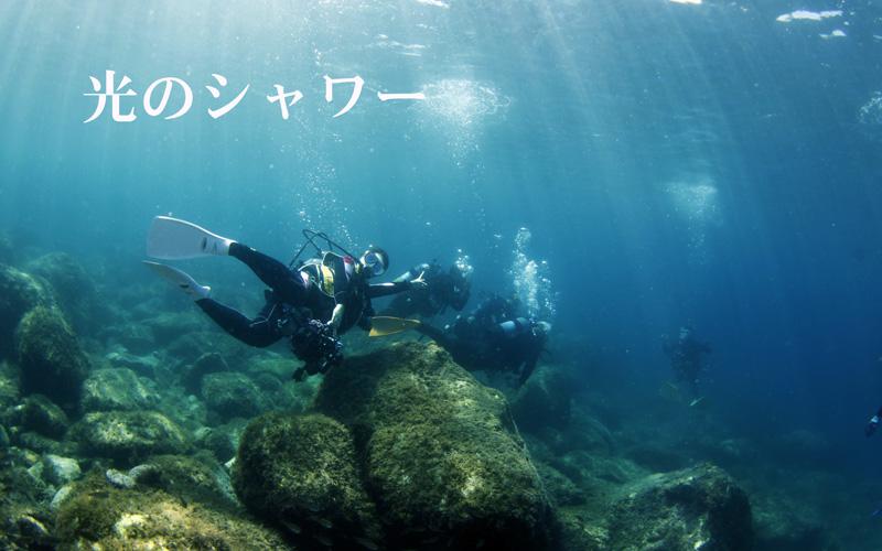 西伊豆黄金崎公園で体験ダイビング光のシャワーを浴びる