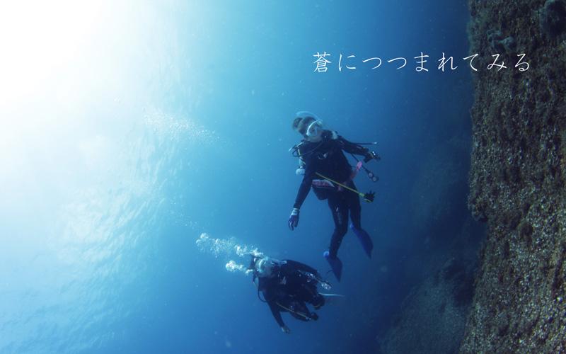 西伊豆黄金崎公園で体験ダイビング青い海で無重量感にしたる
