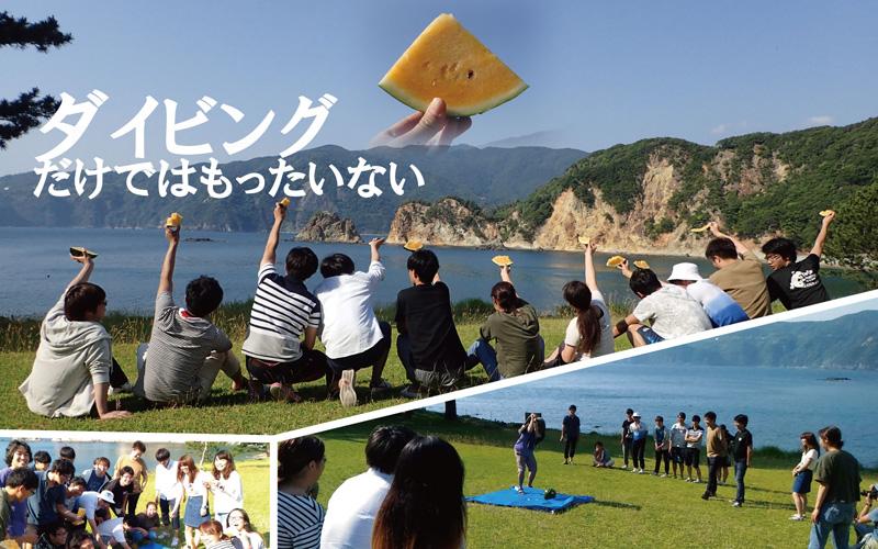 伊豆半島の黄金崎公園は広い芝生が人気、夏の定番はスイカ割り