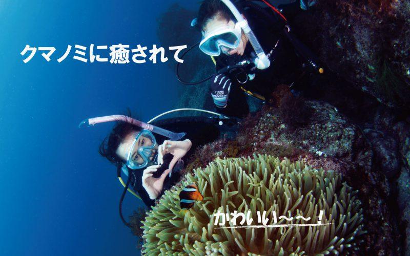 西伊豆黄金崎公園で体験ダイビングでクマノミに会おう