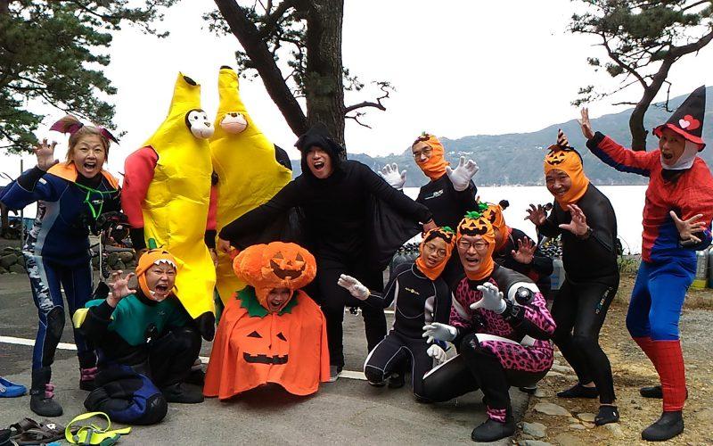 西伊豆黄金崎公園 ダイバー向けイベント ハロウィンで仮装して盛り上がろう