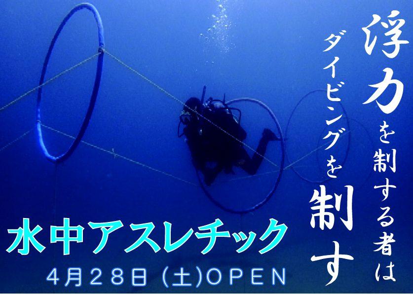 静岡県西伊豆町黄金崎公園ビーチの水中アスレチックの画像です。ここはダイビングはもちろんシュノーケリングや体験ダイビングも楽しめる絶景ポイントです。