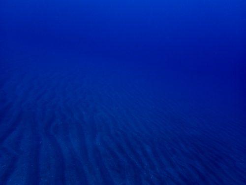 静岡県西伊豆町黄金崎公園ビーチの砂紋の画像です。ここはダイビングはもちろんシュノーケリングや体験ダイビングも楽しめる絶景ポイントです。