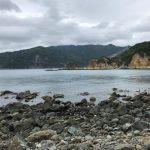 静岡県西伊豆町黄金崎公園ビーチの海況の画像です。ここはダイビングはもちろんシュノーケリングや体験ダイビングも楽しめる絶景ポイントです。