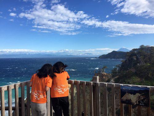 馬ロック:静岡県西伊豆町黄金崎公園ビーチのダイビングで見れました。ここはダイビングはもちろんシュノーケリング(スノーケリング)や体験ダイビングも楽しめる絶景ポイントです。