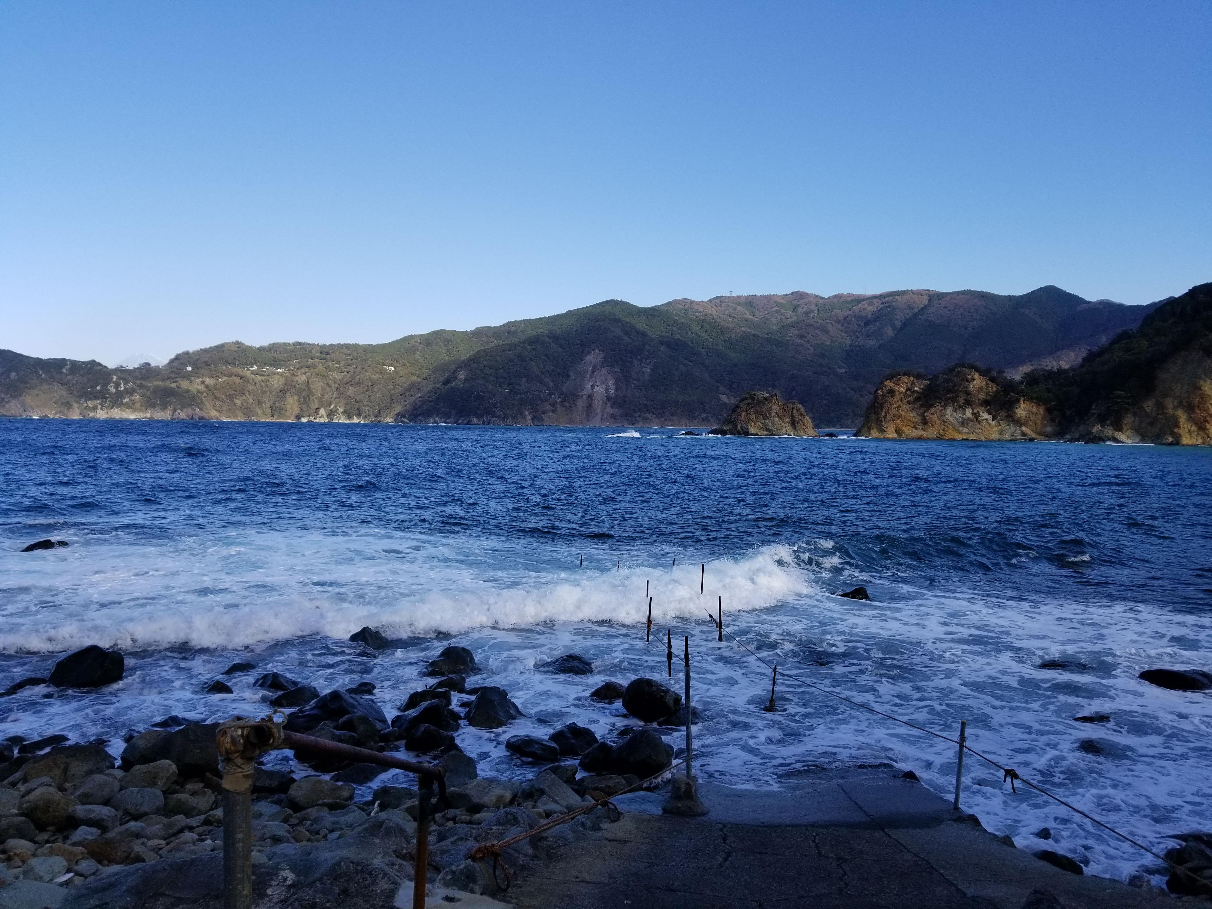 海:静岡県西伊豆町黄金崎公園ビーチのダイビングで見れました。ここはダイビングはもちろんシュノーケリング(スノーケリング)や体験ダイビングも楽しめる絶景ポイントです。