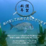 21-01-02daicyan_kinngashinnnen